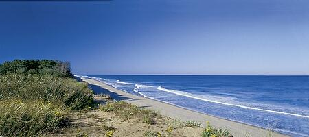Coast Guard Beach by Office of Massachusetts Travel and Tourism
