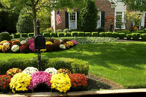 brick house fall flowers american flag